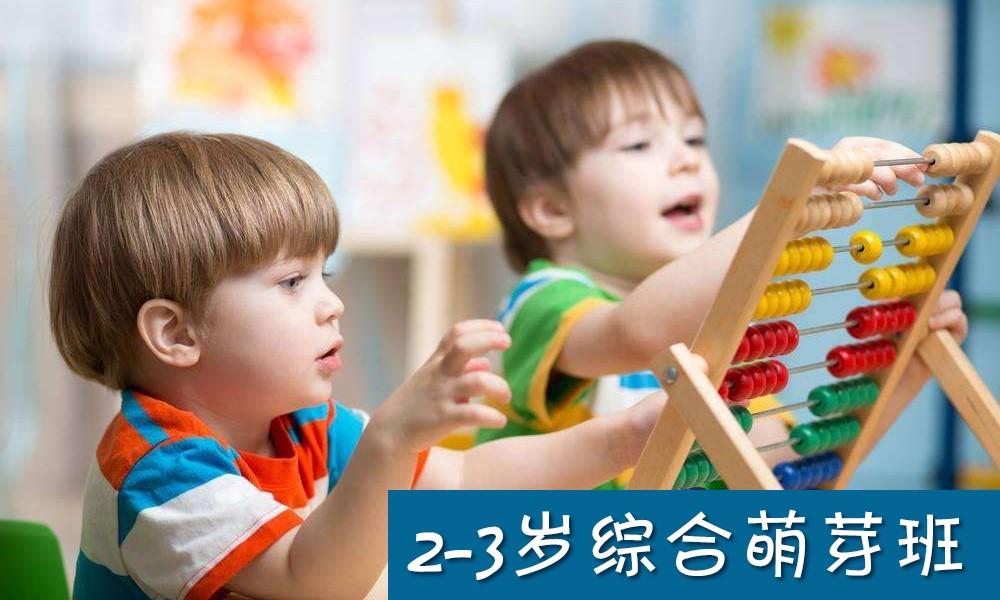 2-3岁综合萌芽班