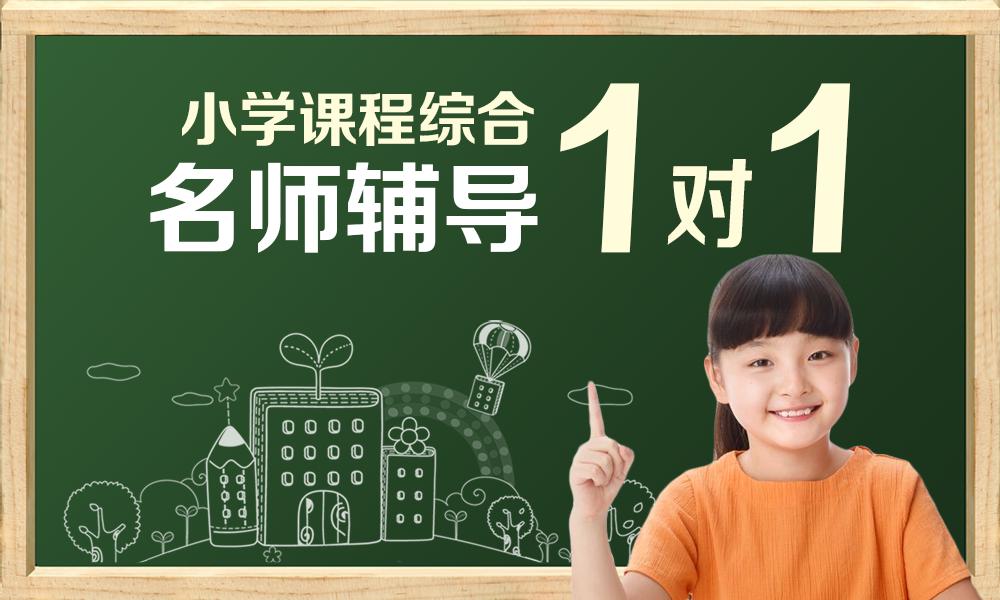 上海小学课程综合辅导班