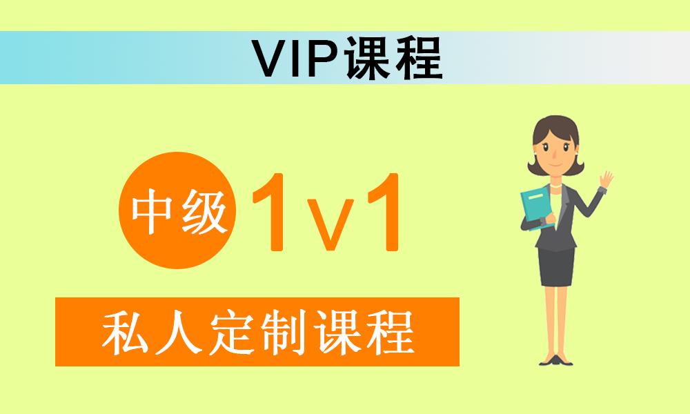 中级日语 1V1 VIP课程