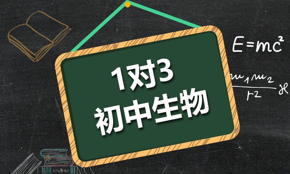 上海精锐初中生物一对三课程