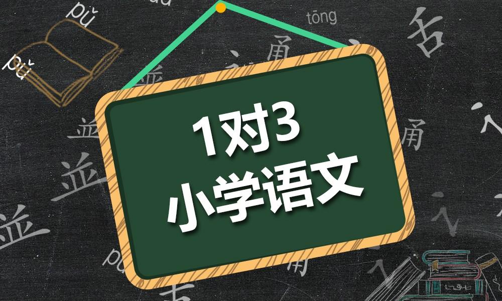 杭州纳思小学语文同步课程