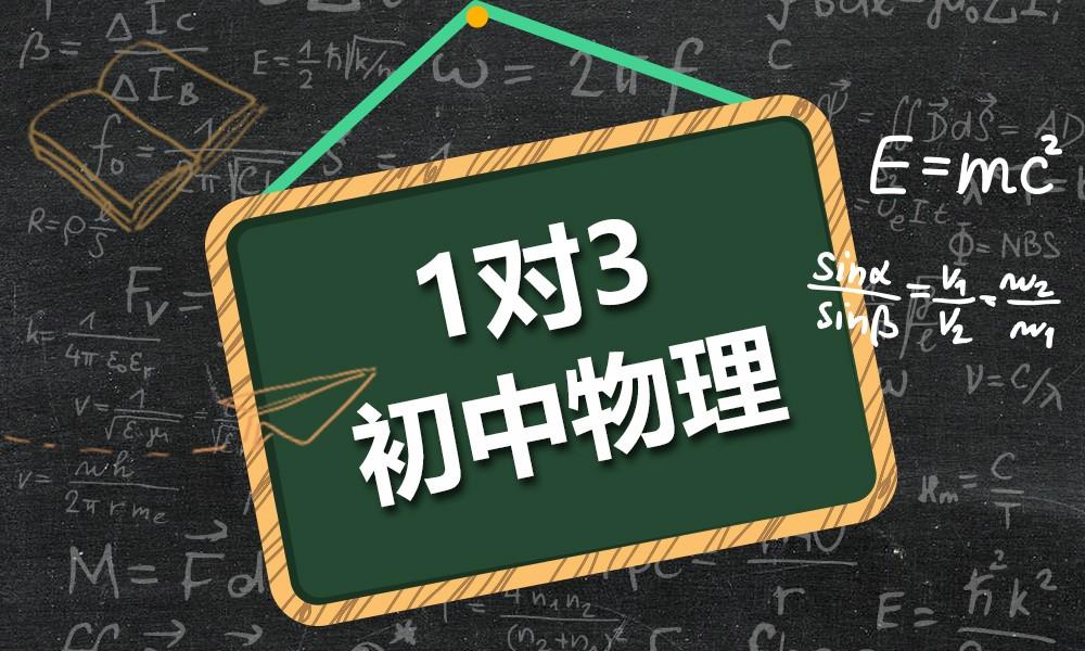上海精锐初中物理一对三课程