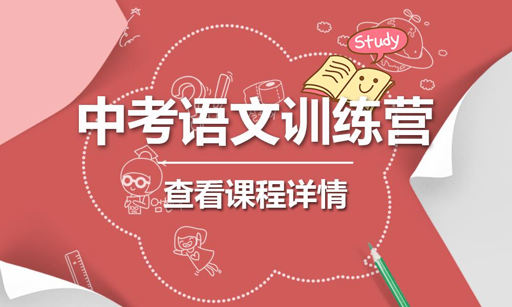 上海精锐中考语文训练突破