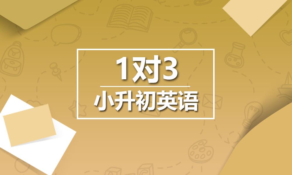 上海精锐小升初英语一对三课程