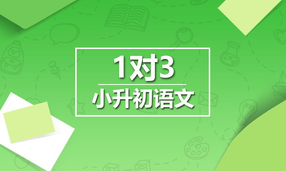 上海精锐小升初语文一对三课程