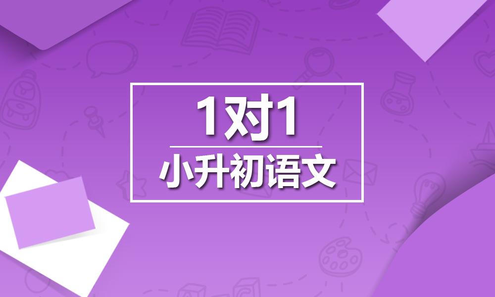 上海精锐小升初语文一对一课程