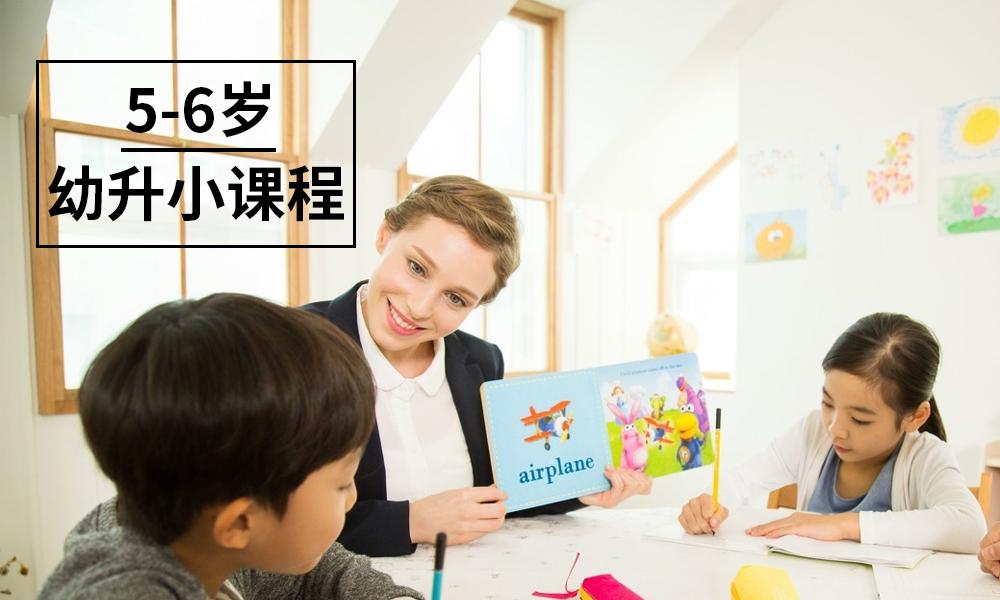 5-6岁幼升小课程