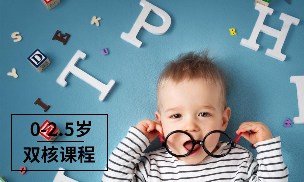 0-2.5岁Baby Star双核课程