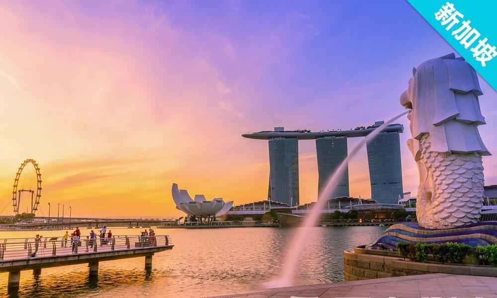 上海启德游学从课堂到实验室—新加坡中学生STEM 计划-2019秋