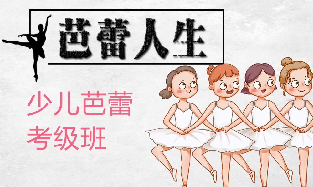 上海金芭蕾舞蹈少儿芭蕾考级班