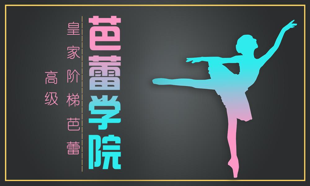 上海金芭蕾舞蹈皇家阶梯芭蕾-高级