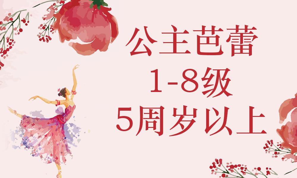 上海贝拉公主芭蕾公主芭蕾1-8级 5周岁以上