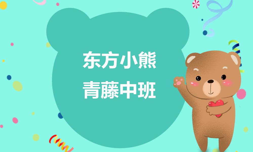 东方小熊青藤中班