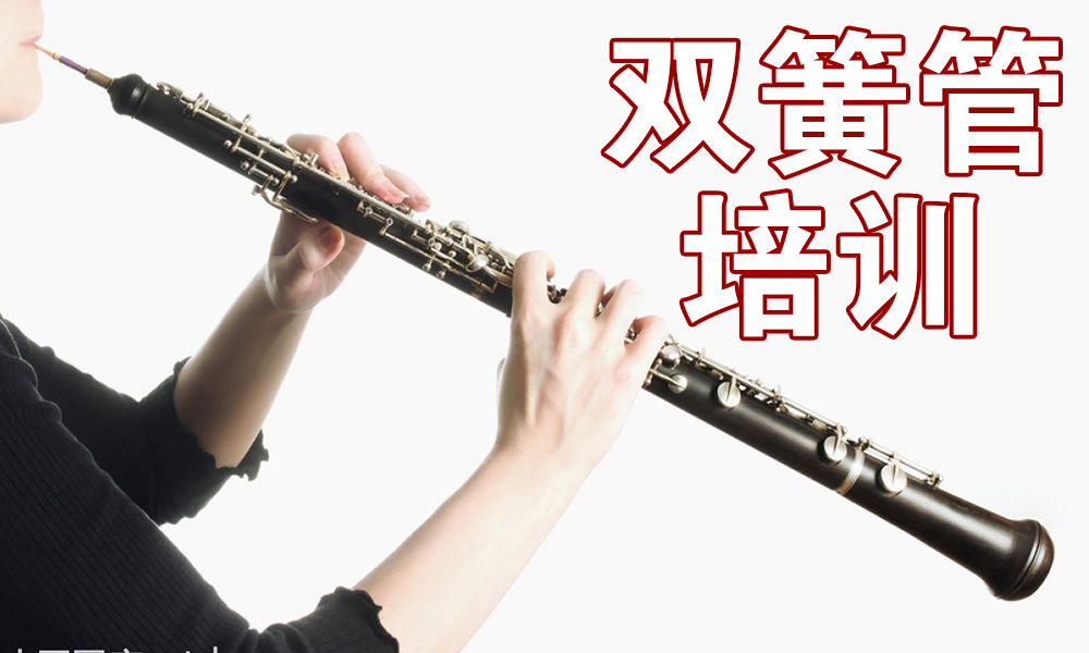 上海好莱坞少儿双簧管培训班