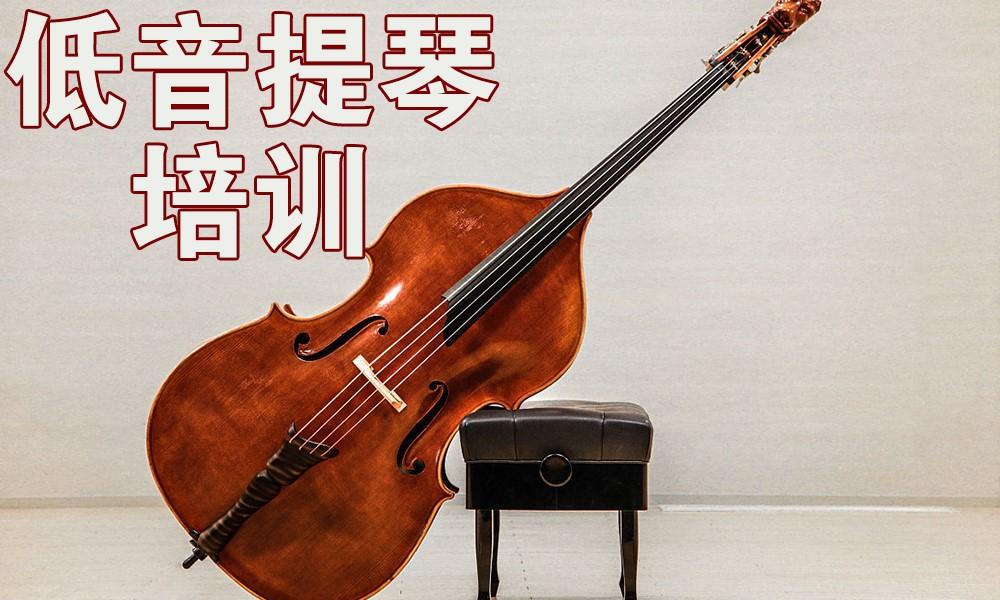 上海好莱坞低音提琴培训
