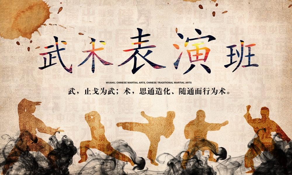 上海上戏小艺星武术表演班
