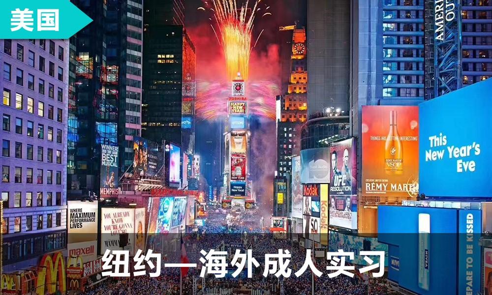 纽约|海外成人实习