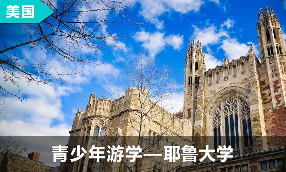 青少年国际夏令营   耶鲁大学游学