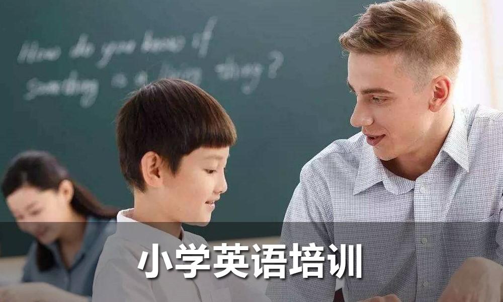 英孚小学英语培训[突破课程]