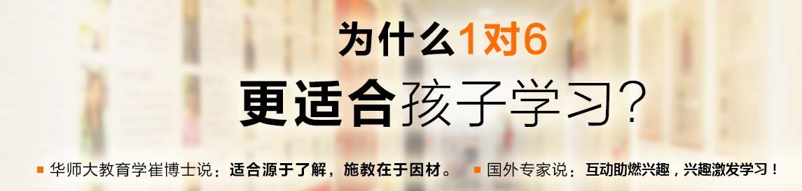 上海致学高三语文高考冲刺班
