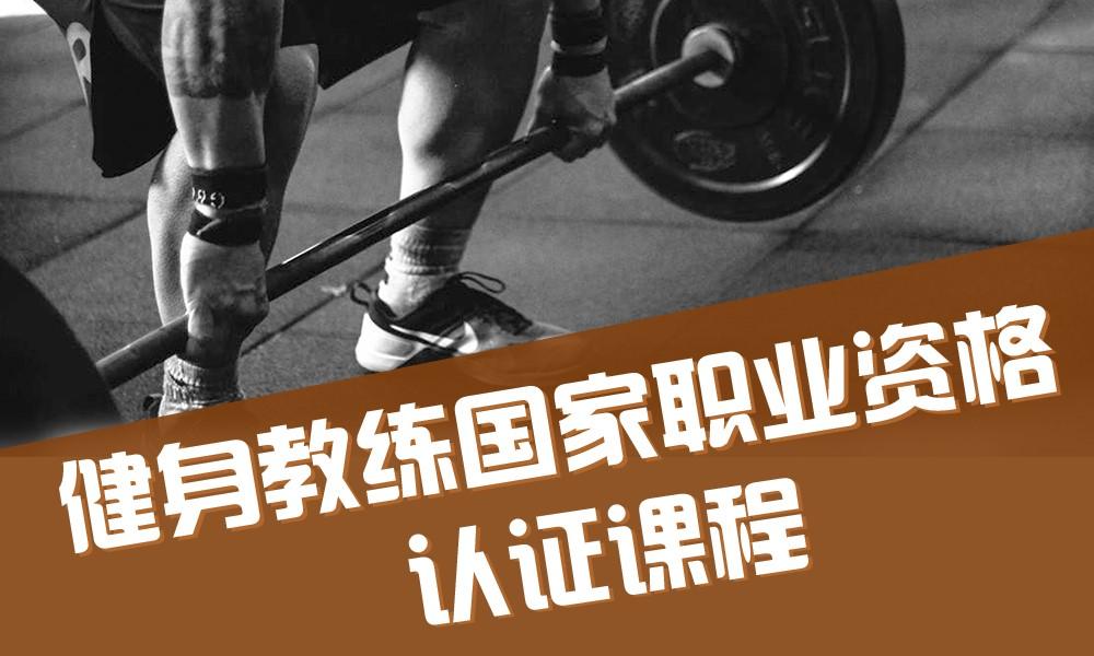 锐星学院健身教练国家职业资格认证课程