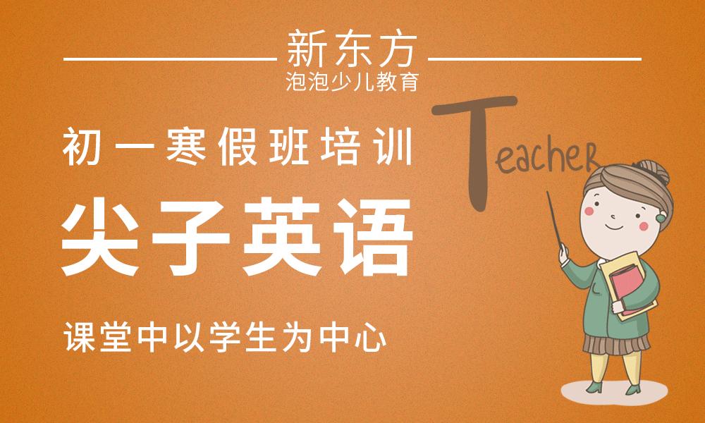 初一尖子英语暑假班培训