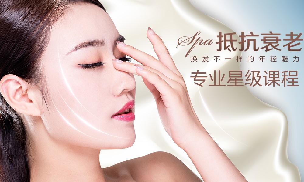 上海艾尼斯美妆连锁美容专业星级课程