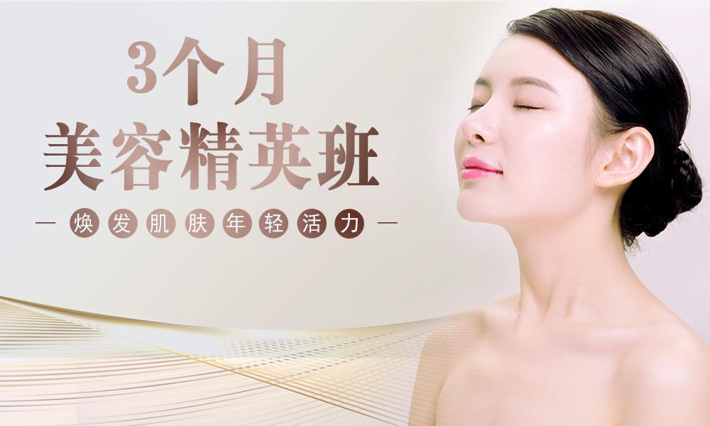 上海艾尼斯美妆连锁3个月美容精英班