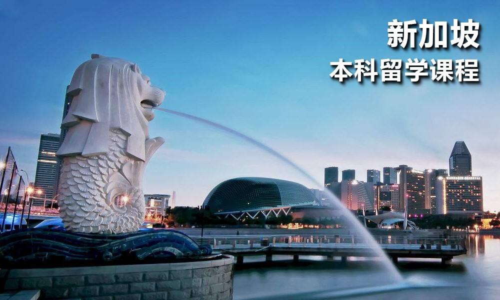新加坡本科留学课程
