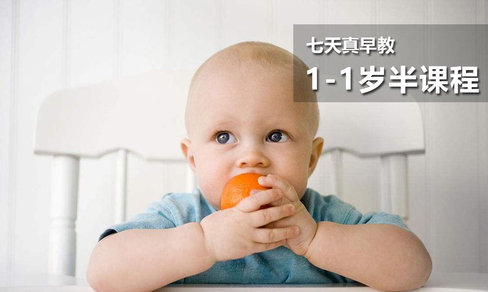 1岁-1岁半课程