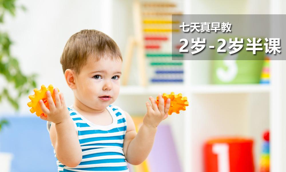 2岁-2岁半的课程