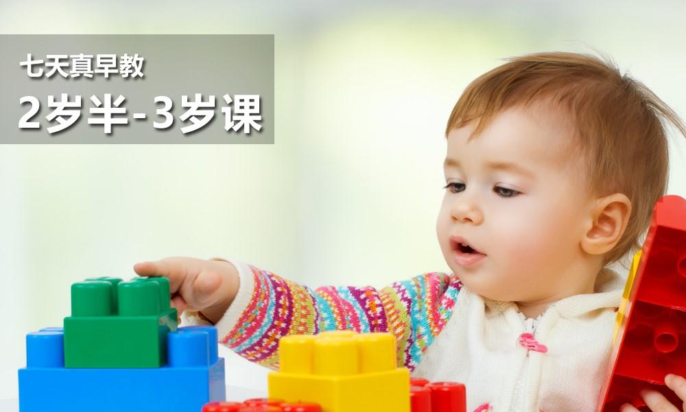 2岁半-3岁课程