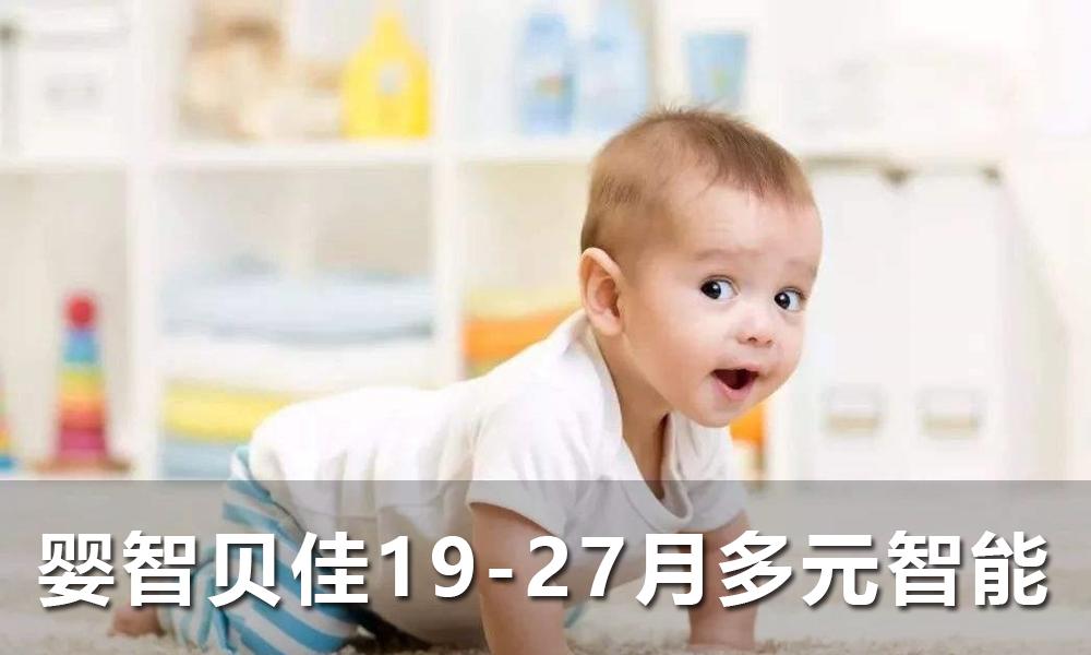 婴智贝佳19-27月 多元智能