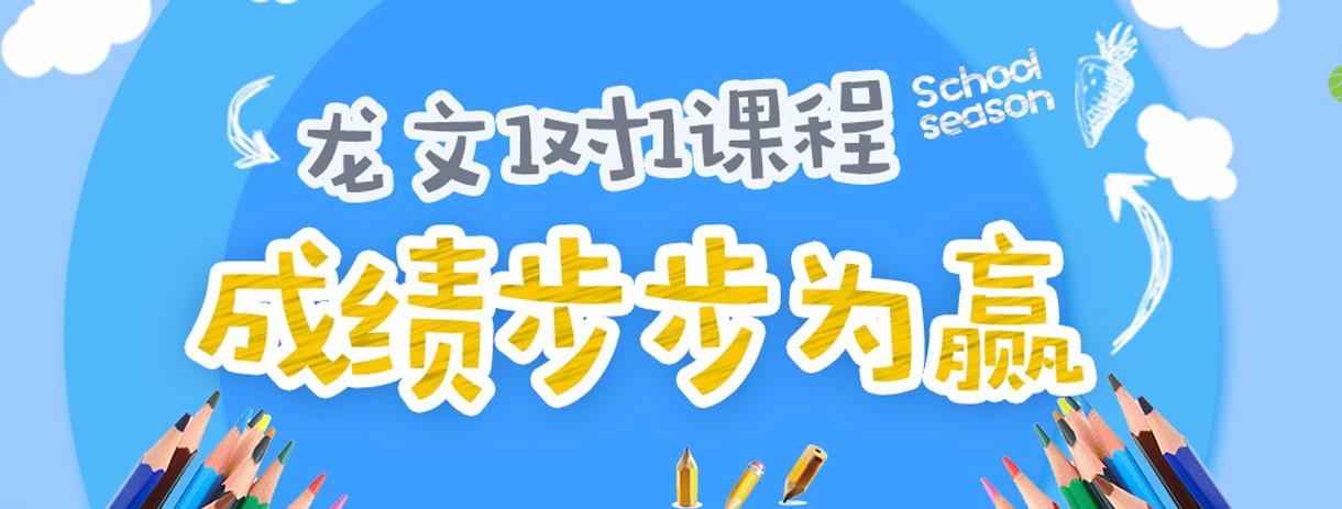 上海龙文教育