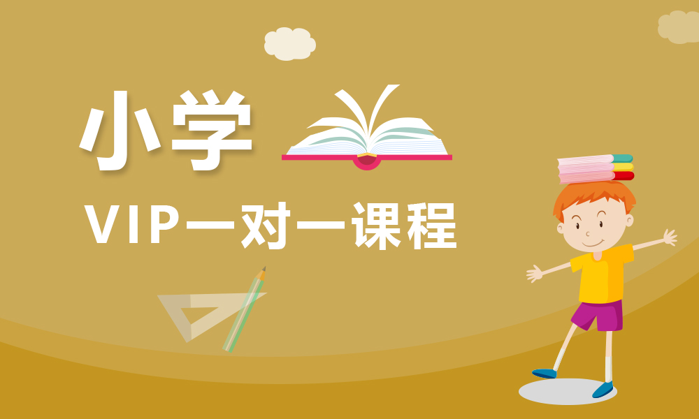 上海思源小学vip一对一课程