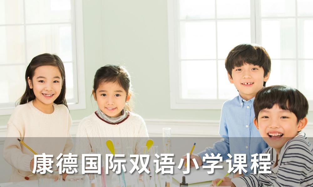 上海康德国际双语小学课程