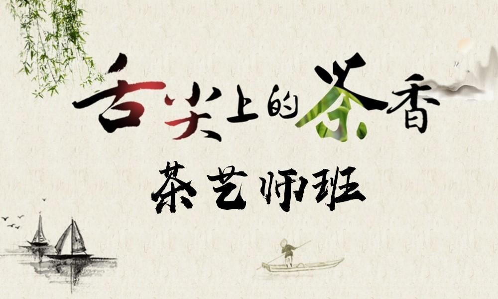 上海五加一茶艺师班