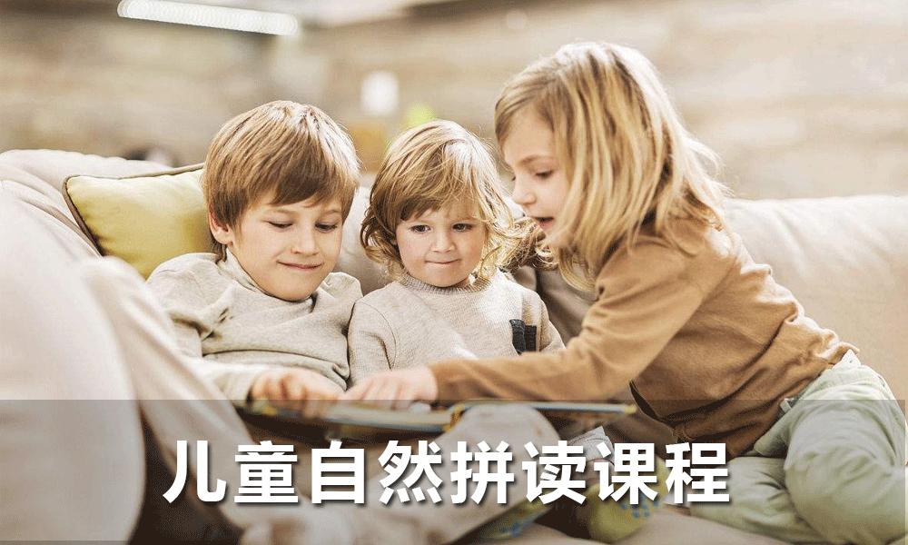 儿童自然拼读课程