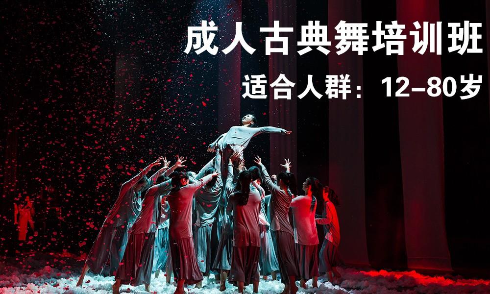 上海桔子树成人古典舞培训班