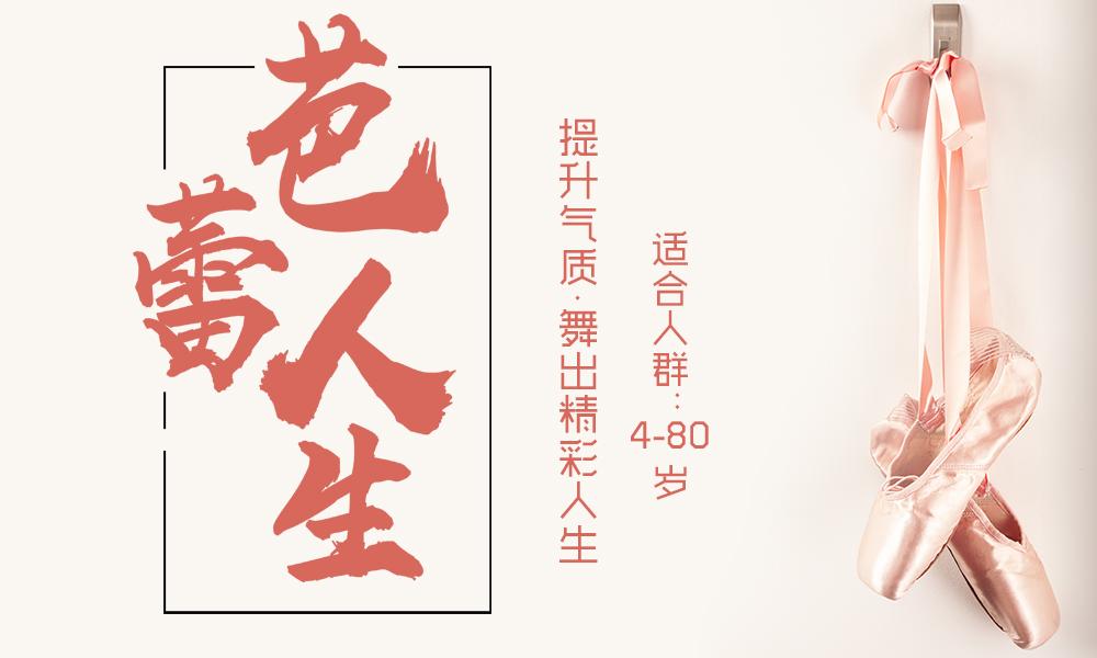 上海桔子树芭蕾舞课程培训班