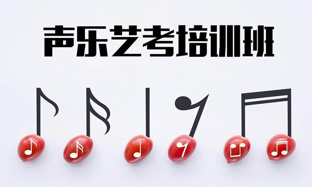 上海桔子树声乐艺考培训班