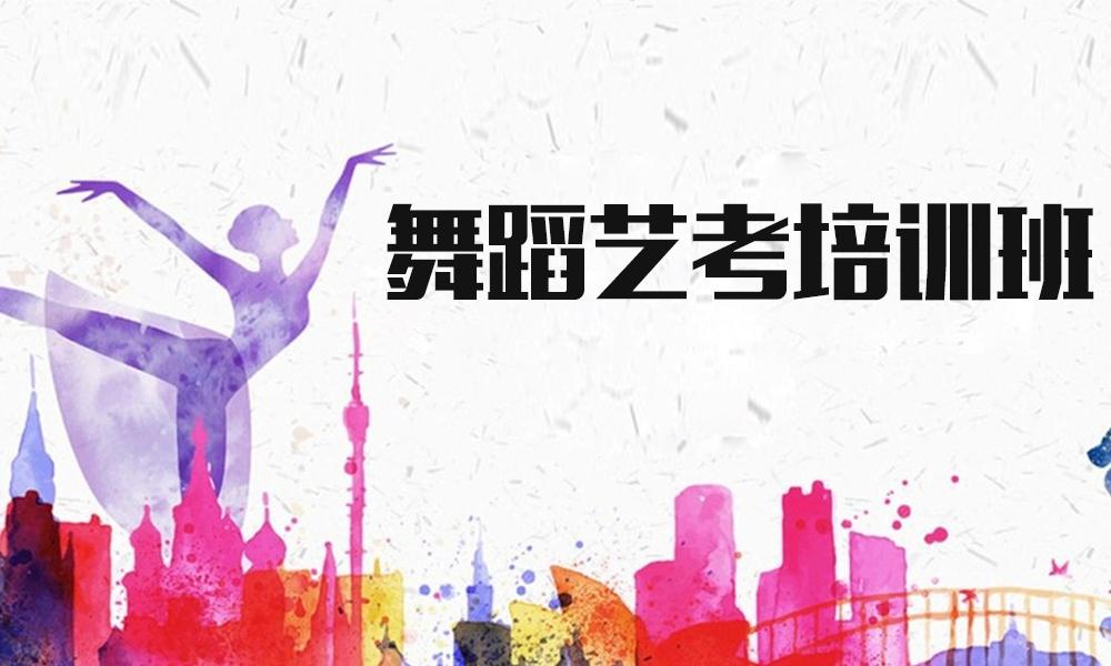 上海桔子树舞蹈艺考培训班