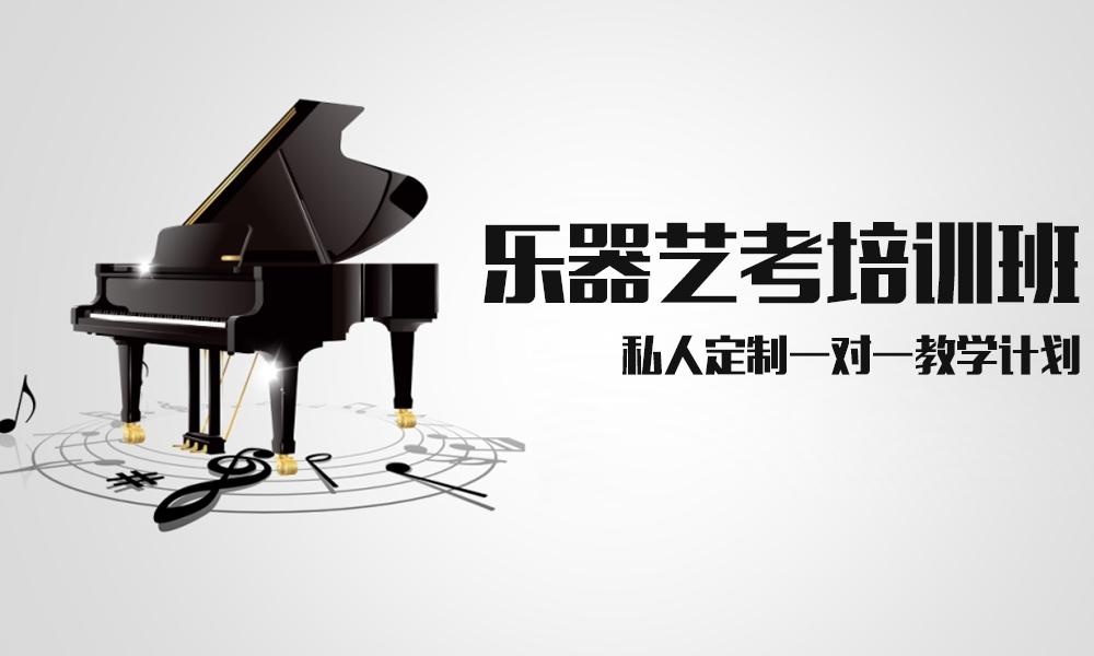 上海桔子树乐器艺考培训班