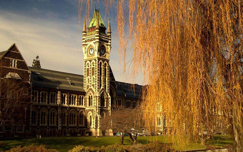 金吉列新西兰本科留学项目