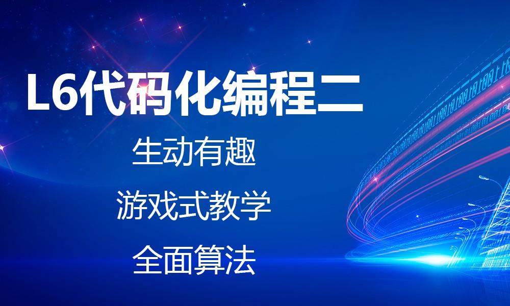 上海极客晨星L6代码化编程二