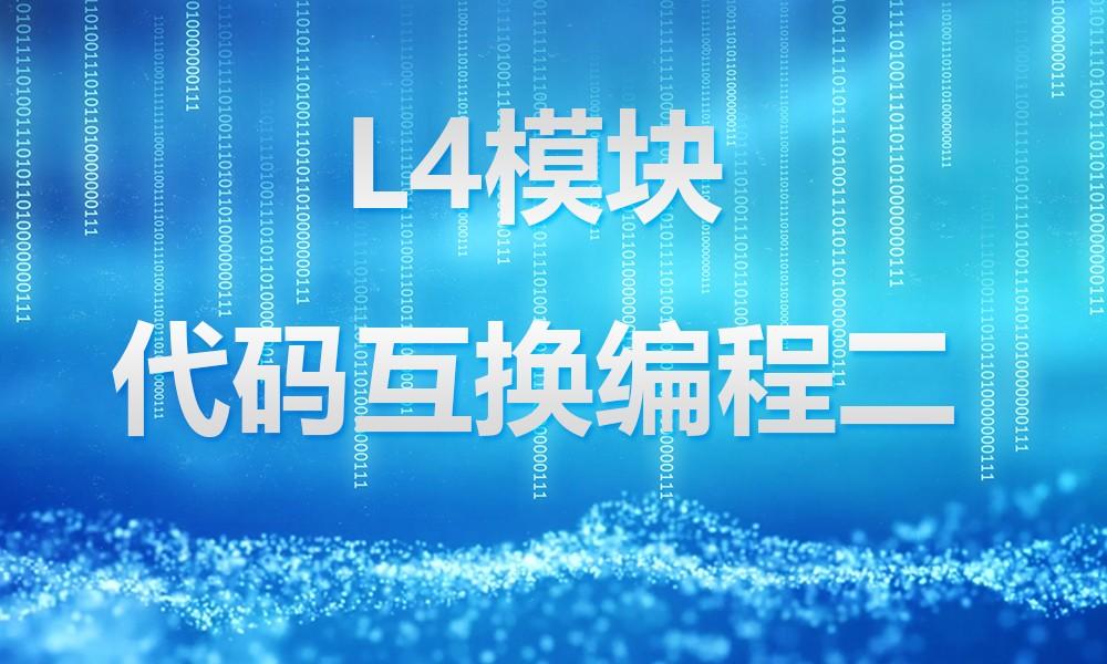 上海极客星辰L4模块、代码互换编程二