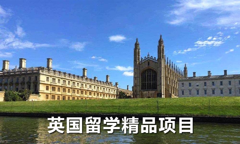 英国留学精品项目