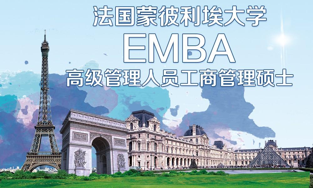 蒙彼利埃大学EMBA项目