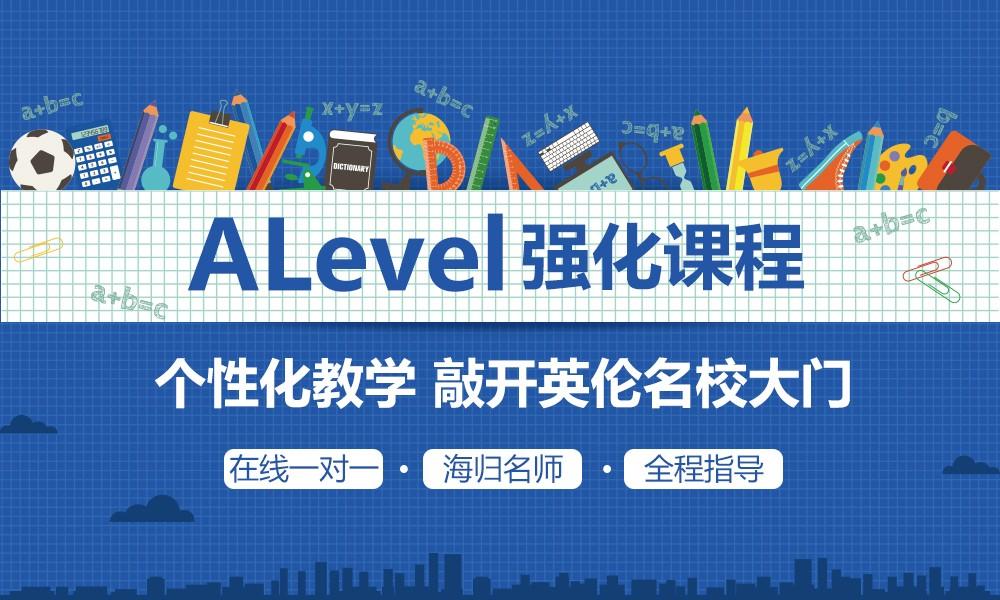 上海菠萝在线 ALevel 强化课程