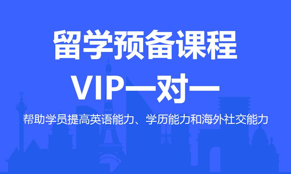 留学预备VIP一对一课程